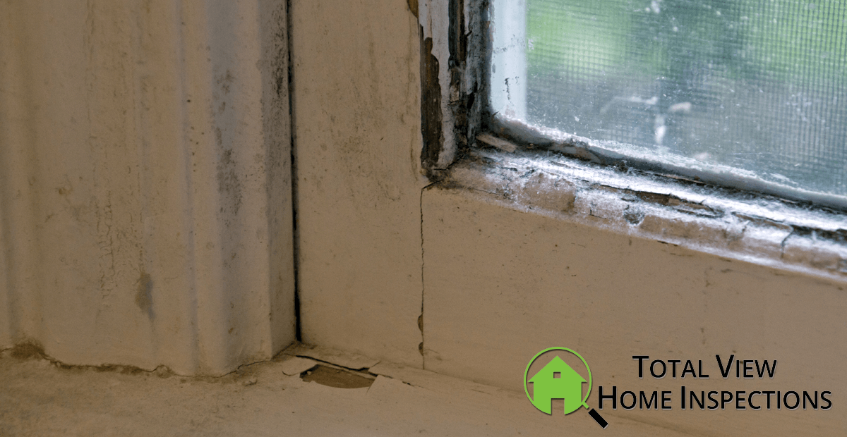 Mandatory Lead Paint Inspections, It's the Law!